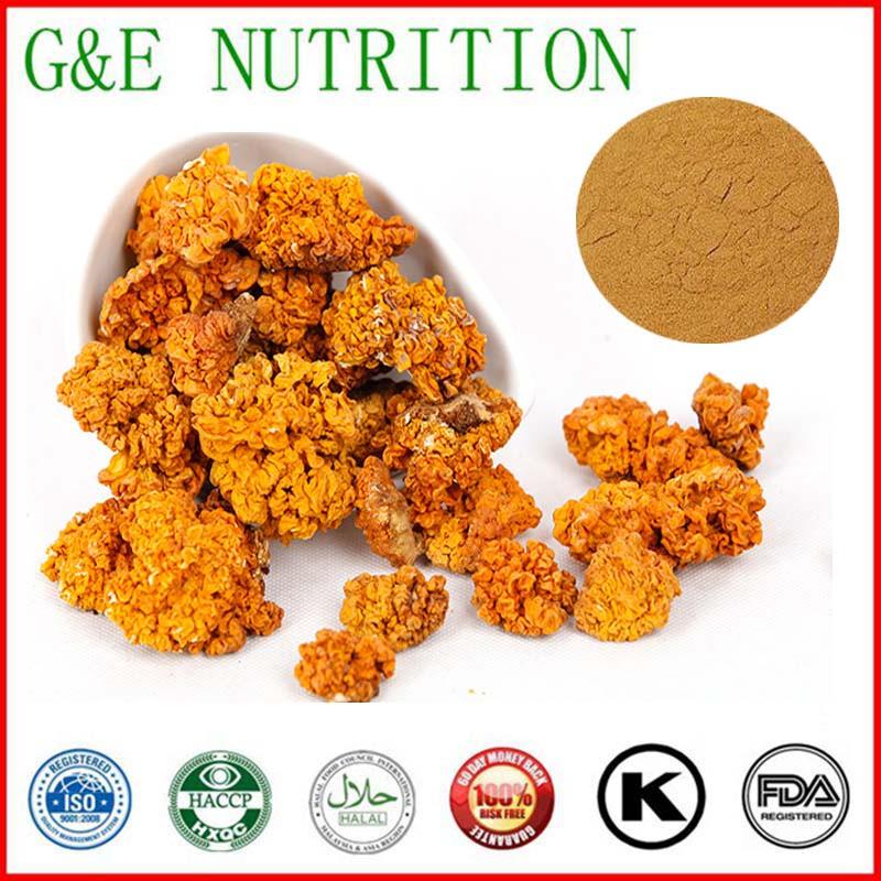 500g Natural Tremella aurantialba/ Tremella aurantia/ golden fungus/ Tremella mesenterica Extract with free shipping(China (Mainland))