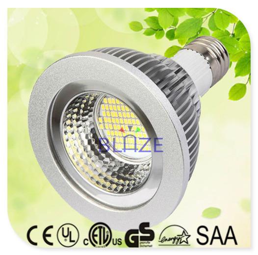 25pcs/Lot HOT Dimmable SMD led par30 lamps 10W PAR30 LED Light E27 Bulb 96pcs SMD 3014 leds 120 Degree(China (Mainland))