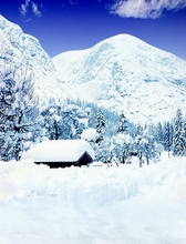 2M*1.5M(6.5FT*5FT) photo studio floor Snow mountain forest house Christmas backgroundsZZ 1957