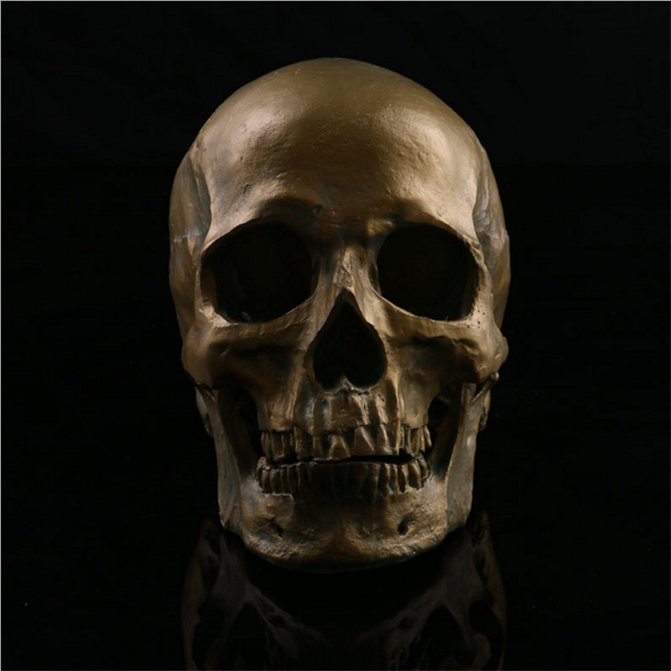 Human 1:1 Skull Head Resin Halloween Haunt Stage Prop Decoration Cool Resin Skull Head Medical Skeleton(China (Mainland))