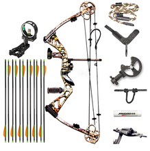 2015 New Design Archery Supplies Hunting Shooting Compound Bow and Arrow Set Aluminium Alloy Riser CNC Alloy Cams  SLD-HWXLT