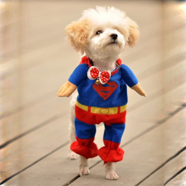 New Hot Superman Pet Dog Jumpsuit Suit Set Puppy One Piece Apparel Clothes Costumes Party Dress(China (Mainland))