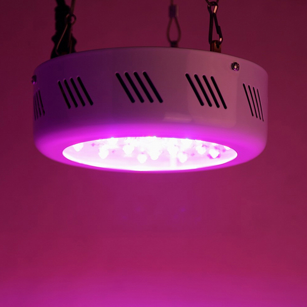 Free Shipping USA Demestic Delivery Newest 46*3w 138W UFO Led Grow Light Full Spectrum High out put for Greenhouse(China (Mainland))