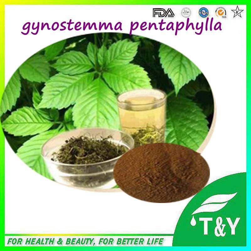 Gypenoside powder 98%, 94987-08-3 Gynostemma Extract/Gynostemma