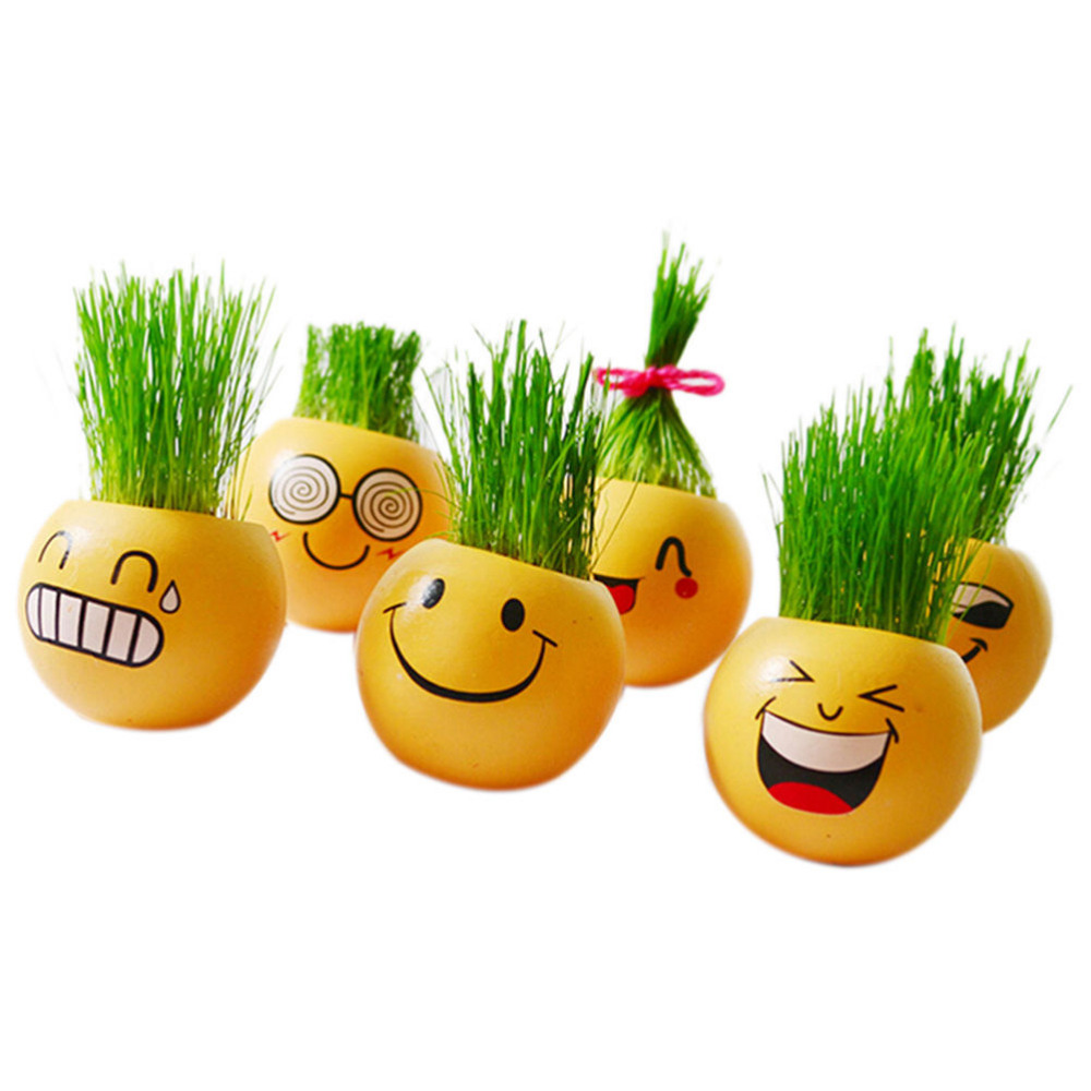 Ceramic Cartoon Emoji Print Flower Pot with Magic Grass Plant Pot Grass Seed New Style(China (Mainland))