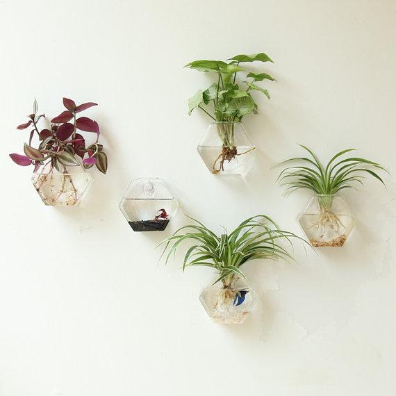 New Design Hexagon Glass Planter Terrarium Wall Hanging