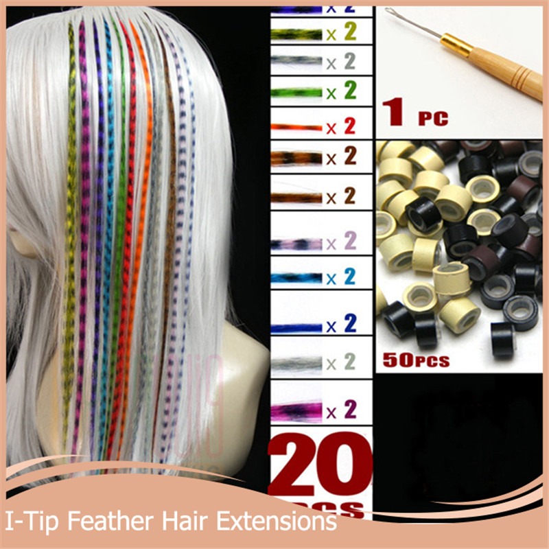 2 + 50 Beads+1 pc Hooked Needles 16''40cm Long Grizzly Hair Extensions Multicolor Feather Synthetic Hairpiece - Queen*Hair store