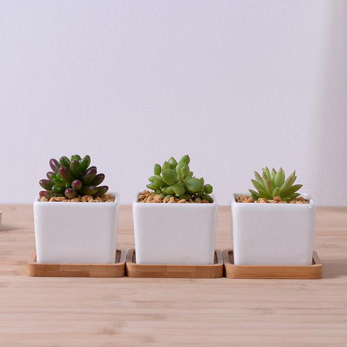 New Design White Glazed Ceramic Decorative Flowerpot With