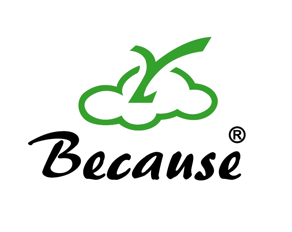 Because LOGO