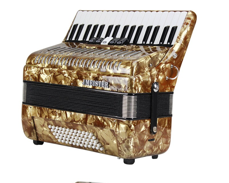 accordion adult play
