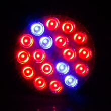 54W привело растут свет  от Acreate store артикул 32346914902