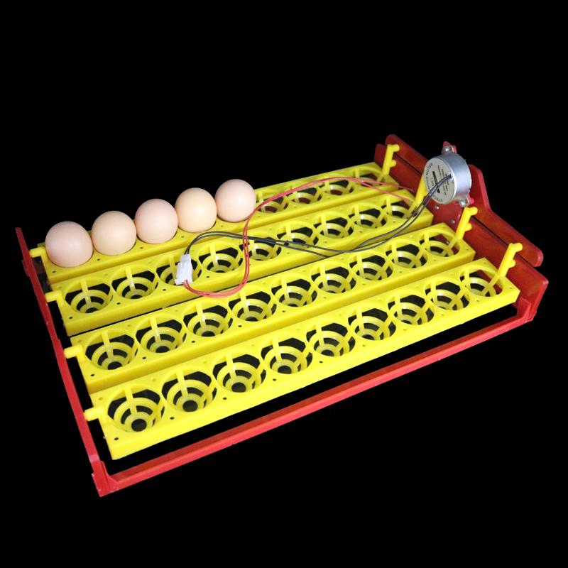 Дешёвые Автоматический Инкубатор Яйца и схожие товары на AliExpress