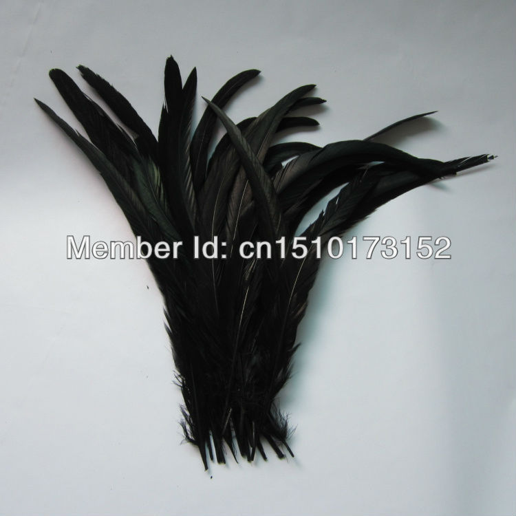 10lot Black Color Rooster Tail feather 14-16inches/35-40cm Crafts GJ2-2 - TiTi Feather Market store