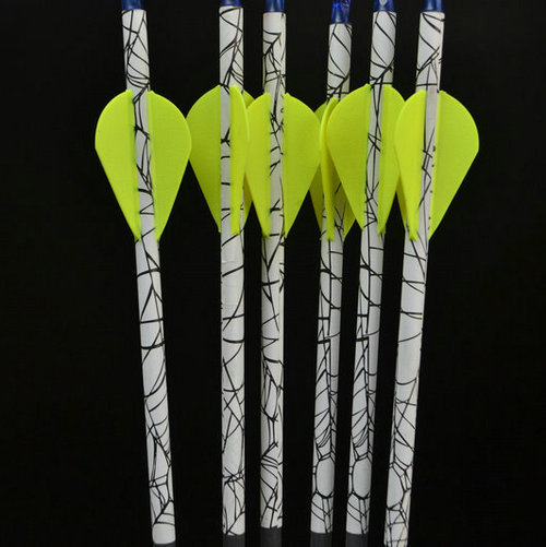 Compound Bow Arrow for Hunting Bow Archery target bow and arrow Sport with Carbon Shafts Spine