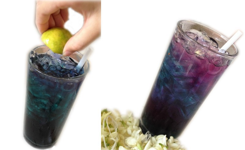 тайский синий чай для зрения