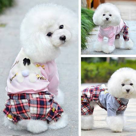 M special clearance PETCO Bear bronzing cotton T-shirt pet dog clothes wholesale(China (Mainland))