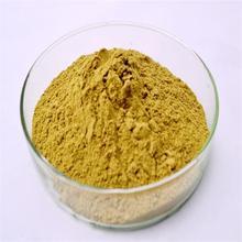 Arabica Green Coffee Bean Powder Wholesale