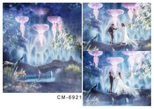 Kate Wedding Backgrounds Vinyl Backdrops For Photography Psychedelic Backgrounds Photo Studio Fotografia
