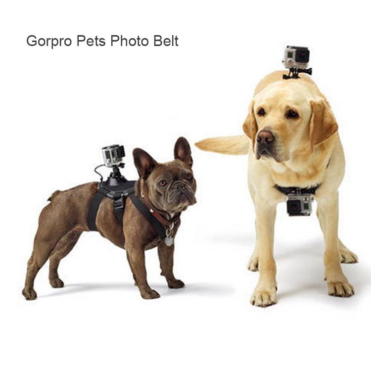 2015 new design pets belt Photo Studio Accessories hero 3 hero 4 accessories dog adjustable belt<br><br>Aliexpress