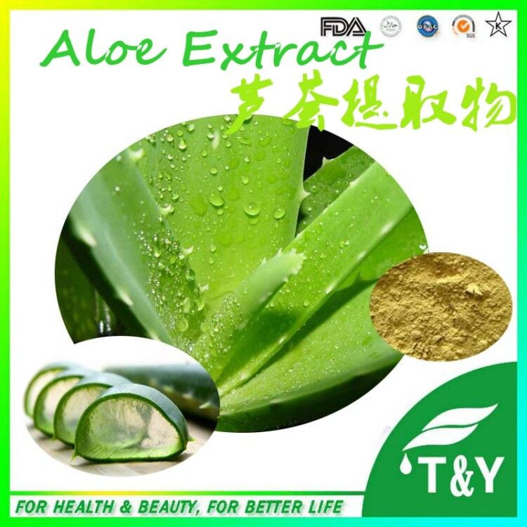 GMP Certified Natural Aloe Vera Dry Extract<br><br>Aliexpress