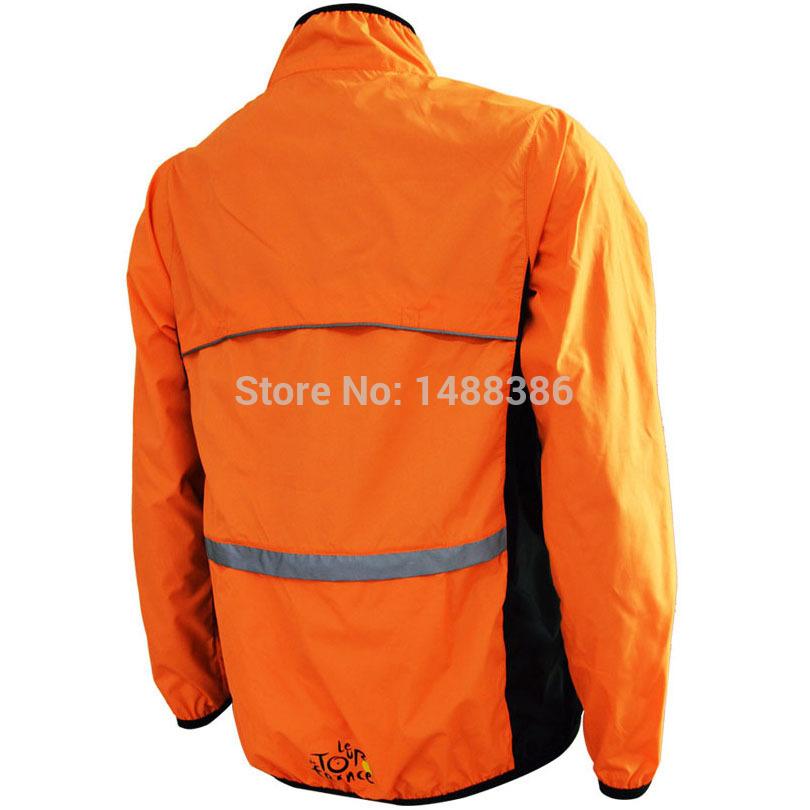 orange back00.jpg