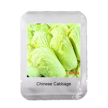 New Hot Selling Delicious 100pcs Chinese Cabbage Seeds Organic New Package Garden Supplies DIY Fruit Seeds Vegetables,#BC002(China (Mainland))