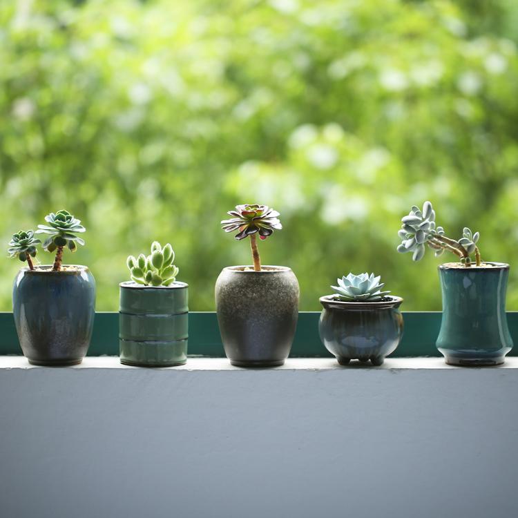 Chinois pots de jardin achetez des lots petit prix for Jardin chinois miniature