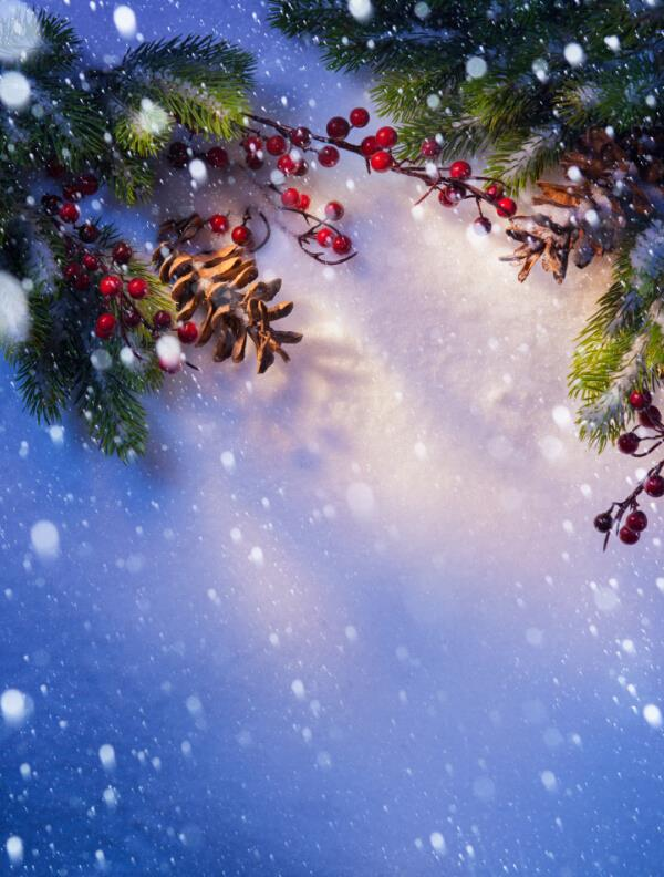 200cm*300cm Vinyl Custom Photography Backdrops Prop Christmas  background HUC-60186 от Aliexpress INT