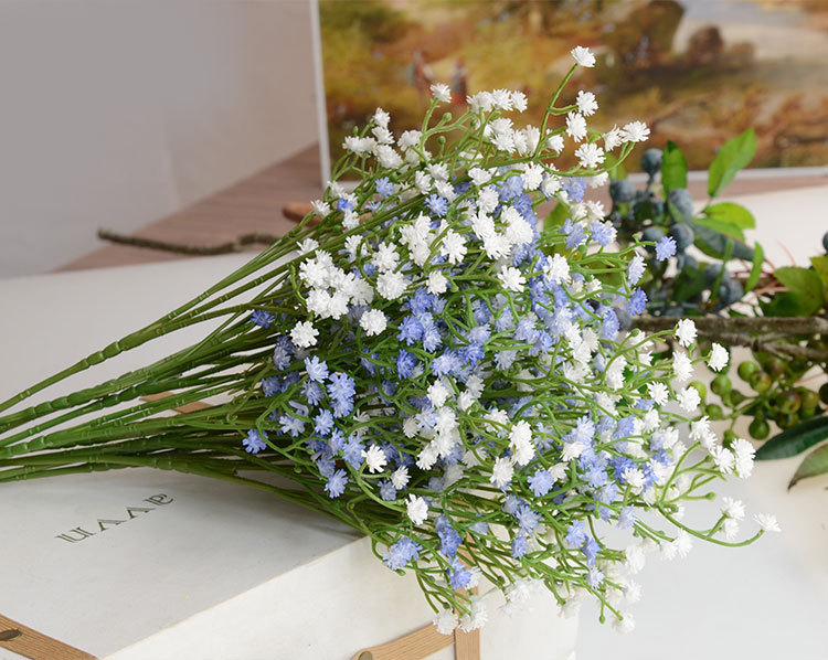 Baby S Breath Find Deals On Line At Alibaba