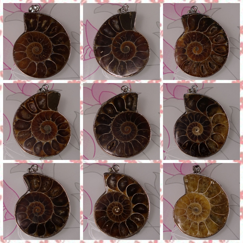 5 PCS Free Shipping Natural Ammonite fossils Shell Pendant Bead Jewelry For Necklace 33-42mm(China (Mainland))