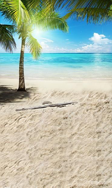 New arrival Background fundo Palm beach footprints 600CM*300CM width backgrounds LK 2299<br><br>Aliexpress