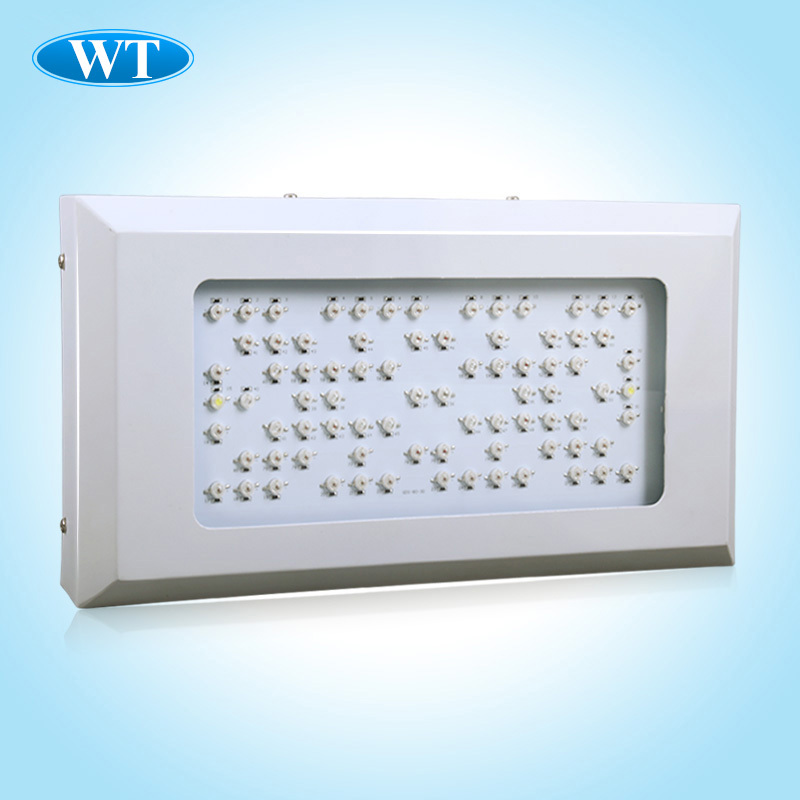 High quality 240w Led Aquarium Light,80x3W LED metal body Aquarium lamp,2 Switch 2 Plug,Best price and Free shipping !(China (Mainland))