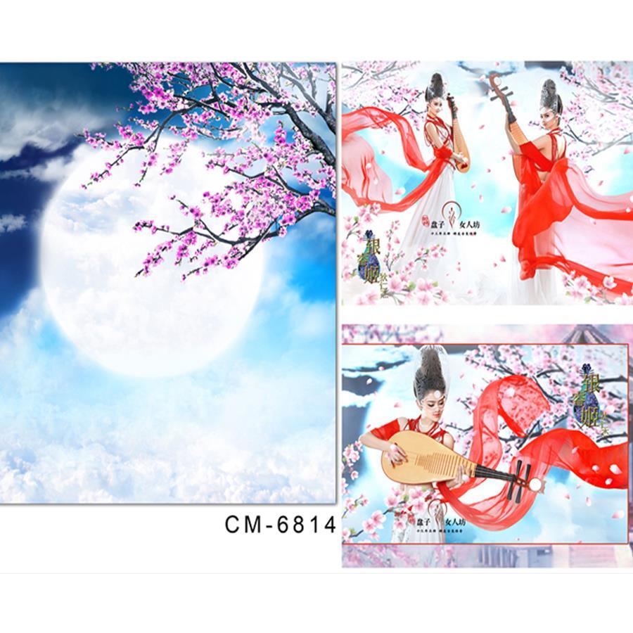 font b Photo b font font b Studio b font Backdrop Baby Moon Peach Cloud