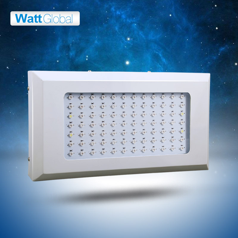 252W Lighthouse Hydro GreenGrow LED Grow light 84*3W Flowering LED's,Dropshipping Promote Seeds,Flowering,Fruiting(China (Mainland))