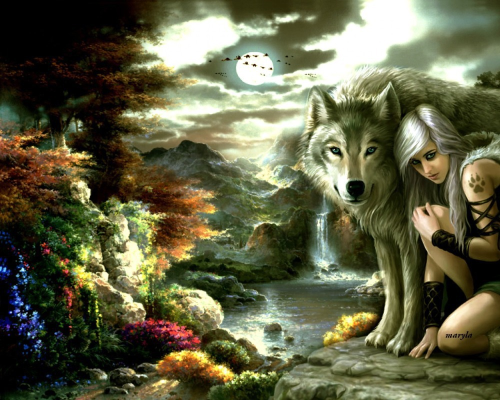 Diy Diamond embroidery painting set 40x30cm girl a wolf -square diamond painting sets handwork diy picture not finished A1438(China (Mainland))