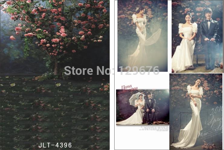 Фотография 3*5m Vinyl Muslin Photography Backdrops Prop Wedding Dress Photofraphy Background  JLT-4396