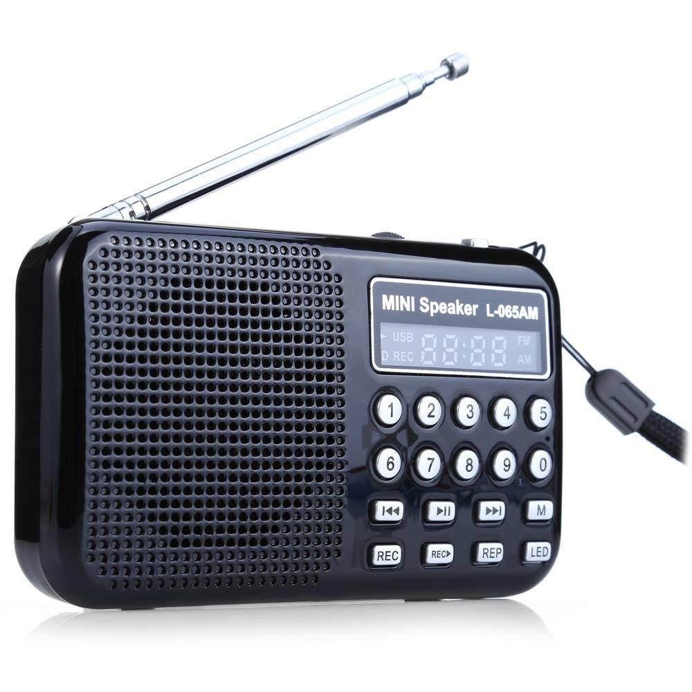 Mini Portable Stereo Speaker L- 065 Portable AM / FM Radio Music Speaker Support TF Card SD Card USB AUX Audio USB Port Input(China (Mainland))