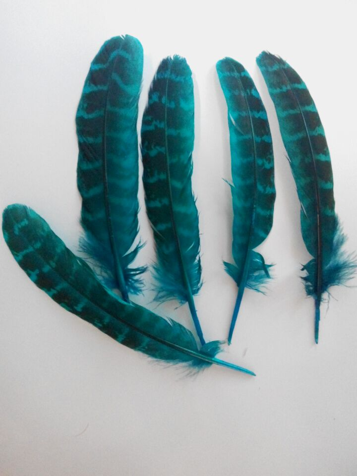 """New! Free shipping sell 10 pc pretty light blue pheasant feather, 4-6 """"/ 10-15cm long, DIY jewelry decorative accessories(China (Mainland))"""