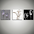 3 piece 100 handmade Black and white canvas oil painting with flower on canvas wall art