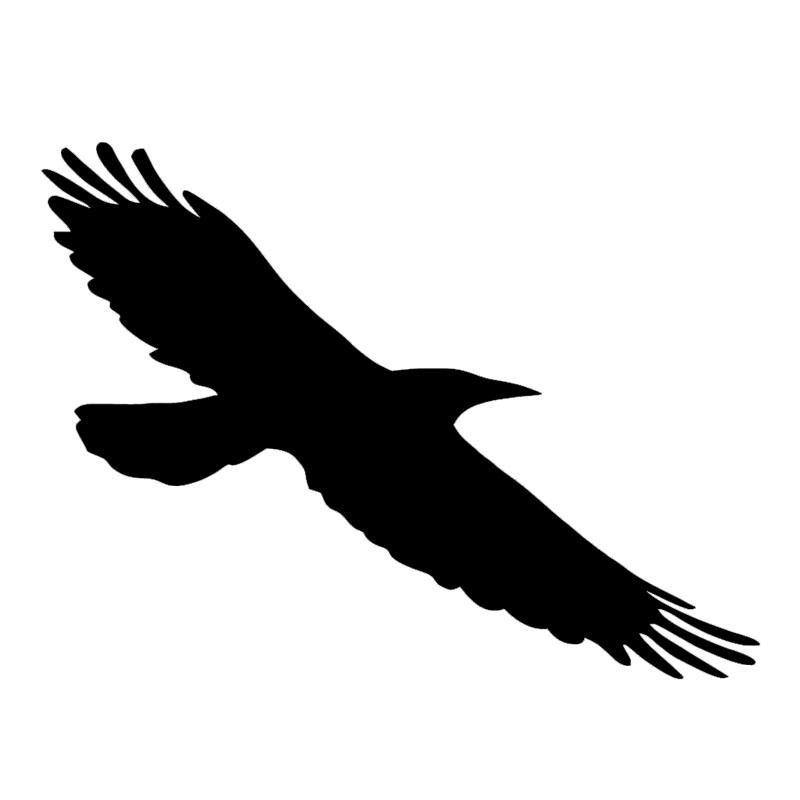 Bande dessin e corbeaux promotion achetez des bande for Fenetre 50x75