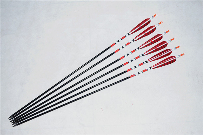12 Pcs Hunting Aluminum Arrows with Ture Turkey Feather and Replaceable Steel Arrowhead for Compound Bow