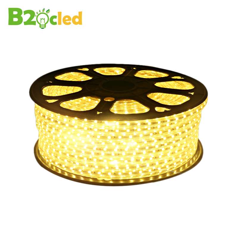 High quality waterproof LED strip light 220V SMD5050 strip lamp for Home Furnishing lighting Indoor ceiling lighting and power(China (Mainland))