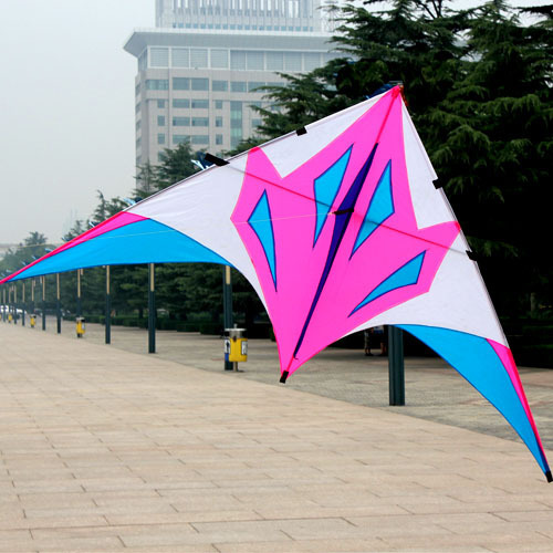 Weifang kite - habergeons fox delta kite umbrella fabric resin rod