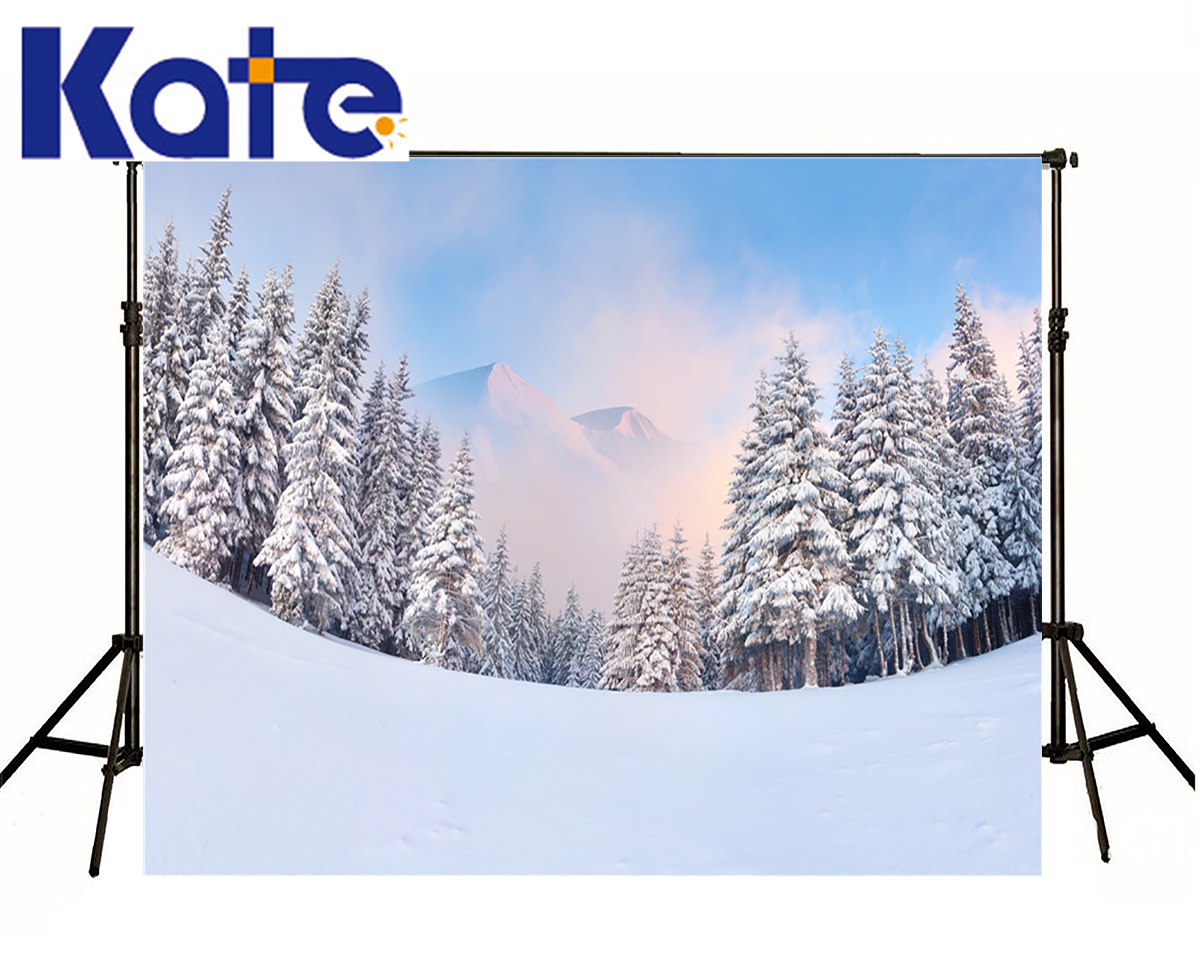 6 5X10Ft font b Photo b font font b Studio b font Backdrop Camera Fotografica Snow