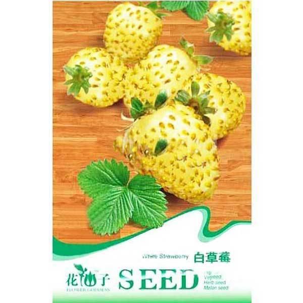 BuyNeer Cheap 20PCS White Strawberry Ornamental Plant Seeds(China (Mainland))