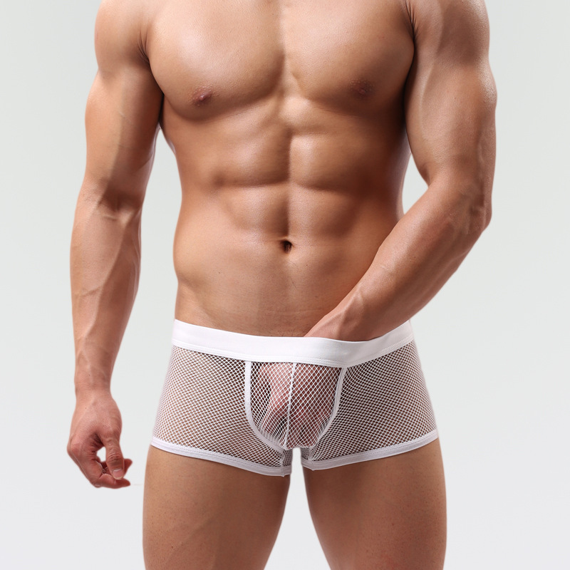 New sexy underwear man transparent network cuecas boxer underwear shorts men for Sexy lingerie gay men's pants(China (Mainland))