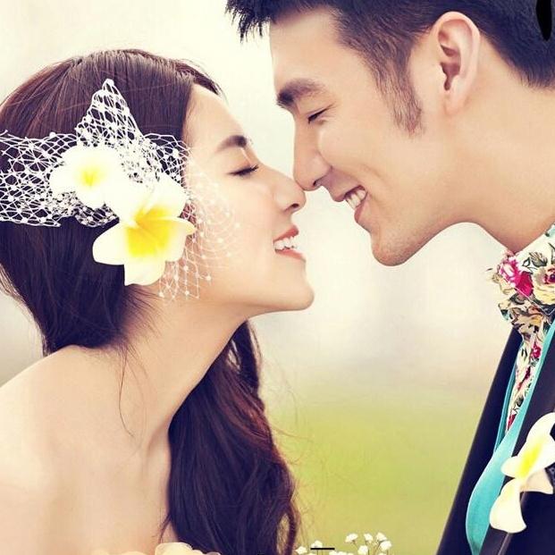 Wedding headdress goody quality hair clip headdress flower accessories B2(China (Mainland))