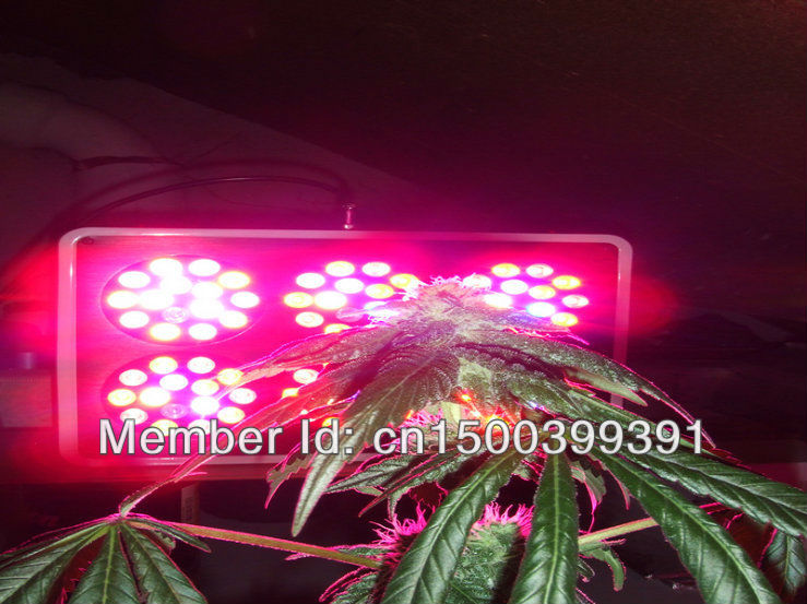 2pcs high power apollo grow lights(China (Mainland))