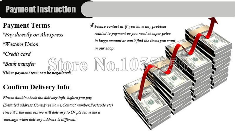 2 Payment instruction