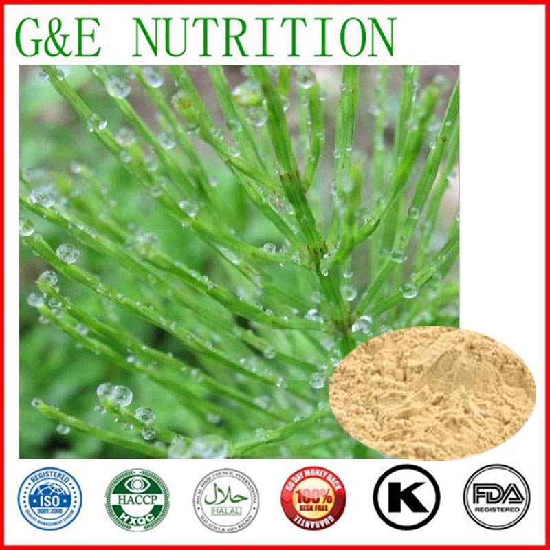 Hot Sale GMP Certificate 100% Pure Natural field horsetail extract 7% by hplc 900g hot selling<br><br>Aliexpress